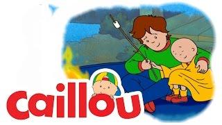 Caillou - Caillou's Gym Day  (S03E05)   Cartoon for Kids