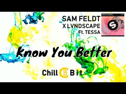 Sam Feldt X LVNDSCAPE - Know You Better ft. Tessa