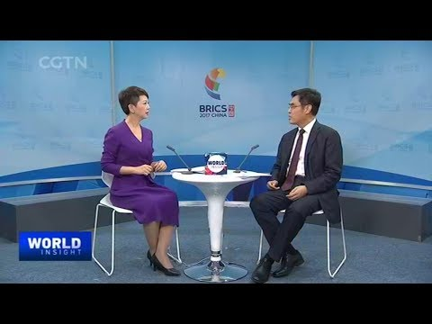 China's State Grid Corp lends hand to BRICS