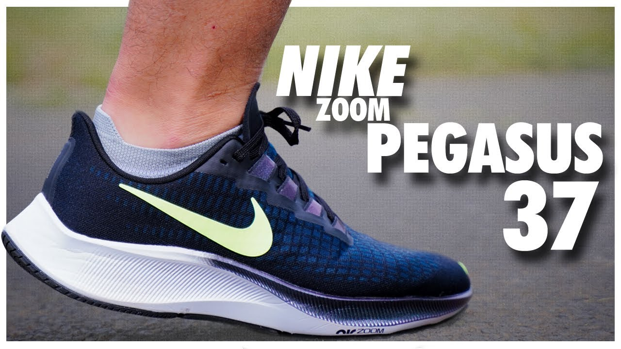 chaussures nike air pegasus 38