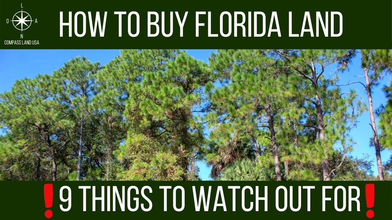 How to Buy Florida Land   9 Things to Watch Out For