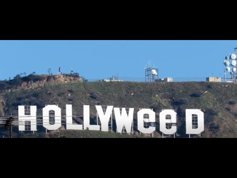Hollyweed Sign brings in 2017 in Hollywood