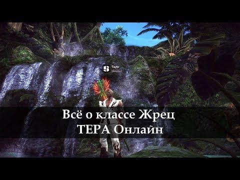 Гайд по Жрецу ТЕРА онлайн TERA Online 2017