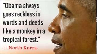 North Korea Calls Obama 'Monkey,' Blames U.S. For Internet Outage
