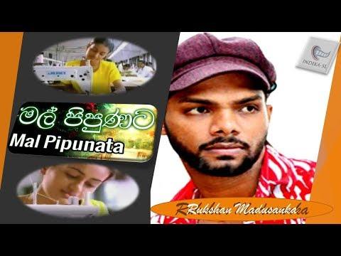 mal-pipunata-suwada-dige-noyannai/මල්-පිපුනට-සුවඳ-දිගේ-/serious-new-song-2019/-rukshi