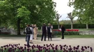 Tulip festival in morges switzerland