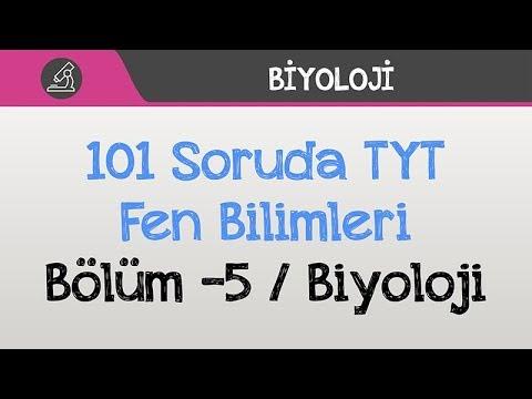 101 Soruda TYT - Fen Bilimleri Bölüm -5 / Biyoloji