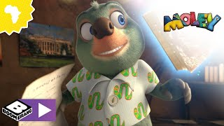 Meeting Moley and all his friends! (Compilation) | Moley | Boomerang Africa