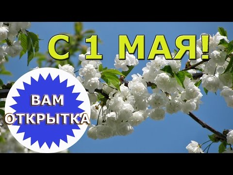 С 1 мая! Праздником Весны и Труда! - Простые вкусные домашние видео рецепты блюд