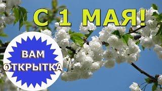 С 1 мая! Праздником Весны и Труда!