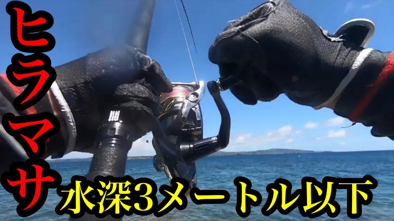 あのヒラマサが水深3メートル以下の激浅エリアでルアーに高反応