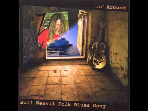 The Boll Weevil Folk Blues Gang - Preaching Blues