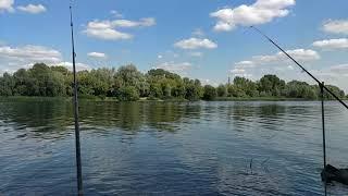 Рыбалка на реке Десна Фидер Сменил место ловли чтобы поймать трофейного леща 06 09 2021