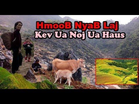 Ncig Teb Chaws : Hmoob NyaB Laj Ua Liaj Ua TeB