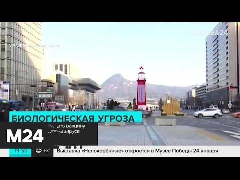 Коронавирус передается от человека к человеку - Москва 24