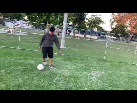 como-jugar-soccer-con-pastor-aleman