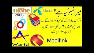 Check your zong sim number for free