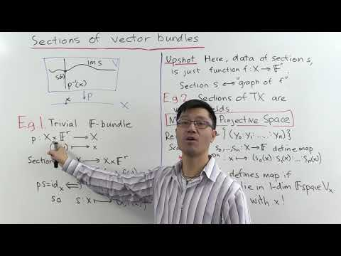 Sections of vector bundles