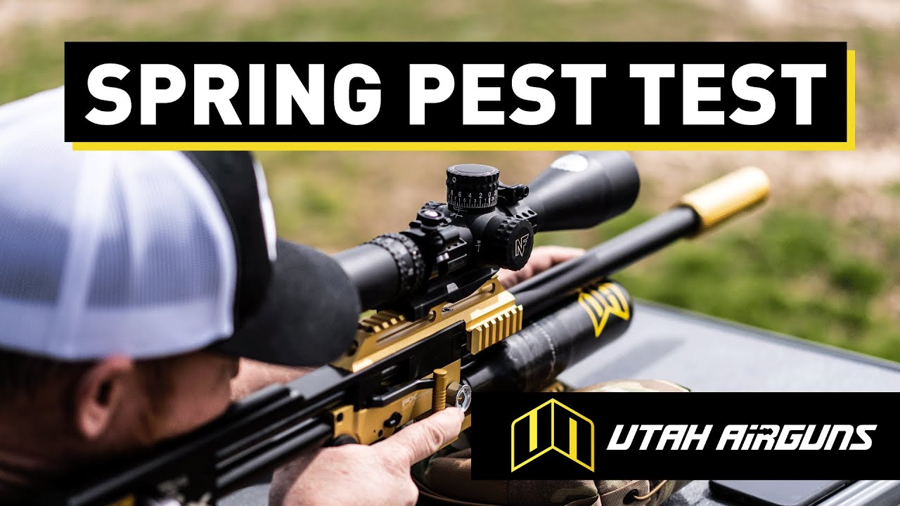 Airgun Hunting with  22 Slugs,  25 Slugs &  22 JSB Hades Pellet | Spring  Pest Test