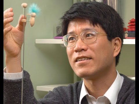 LMS Popular Lecture Series 2008, Toy models, Dr Tadashi Tokieda