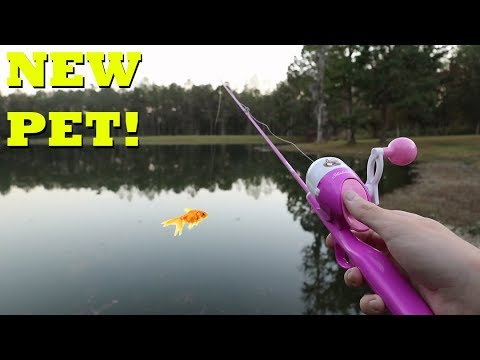 Barbie rod fishing for new pet fish youtube for Barbie fishing pole