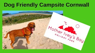 Dog Friendly Campsite in Cornwall, Padstow, Mother Ivey's Bay Holiday Park