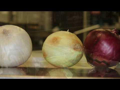 Hammond High Magnet School Prostart - 7 Onion Soup, Mini-Toasted Breadsticks, and Kohlrabi Fritters