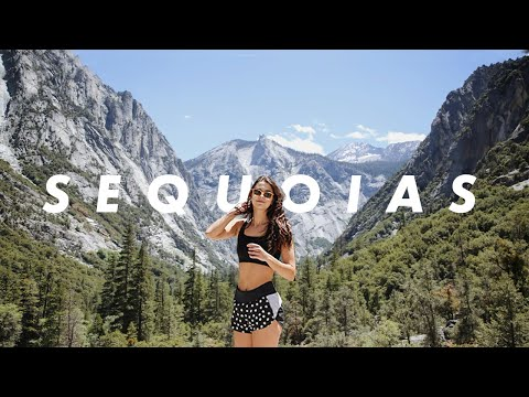 Travel With Me | California Road Trip to Sequoia National Park