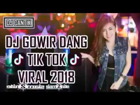 DJ GOWIR DANG TIK TOK 2018