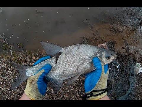 Рыбалка Кастинговой сетью