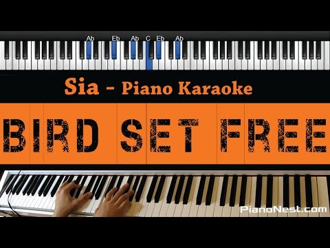 Sia - Bird Set Free - Piano Karaoke / Sing Along / Cover with Lyrics