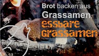 Survival Tipps & Tricks: Brot backen aus Grassamen, essbare Grassamen