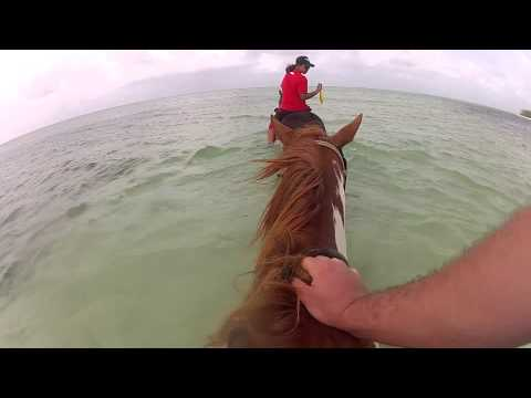 GoPro HD: Swimming with a Horse in the Cayman Islands Time-L