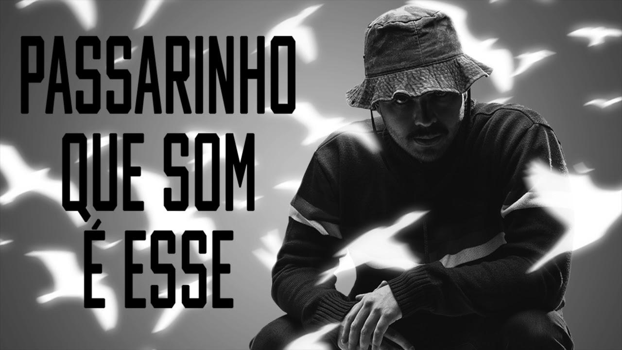 DJ TOPO, MC CYCLOPE, MC PR - PASSARINHO QUE SOM É ESSE