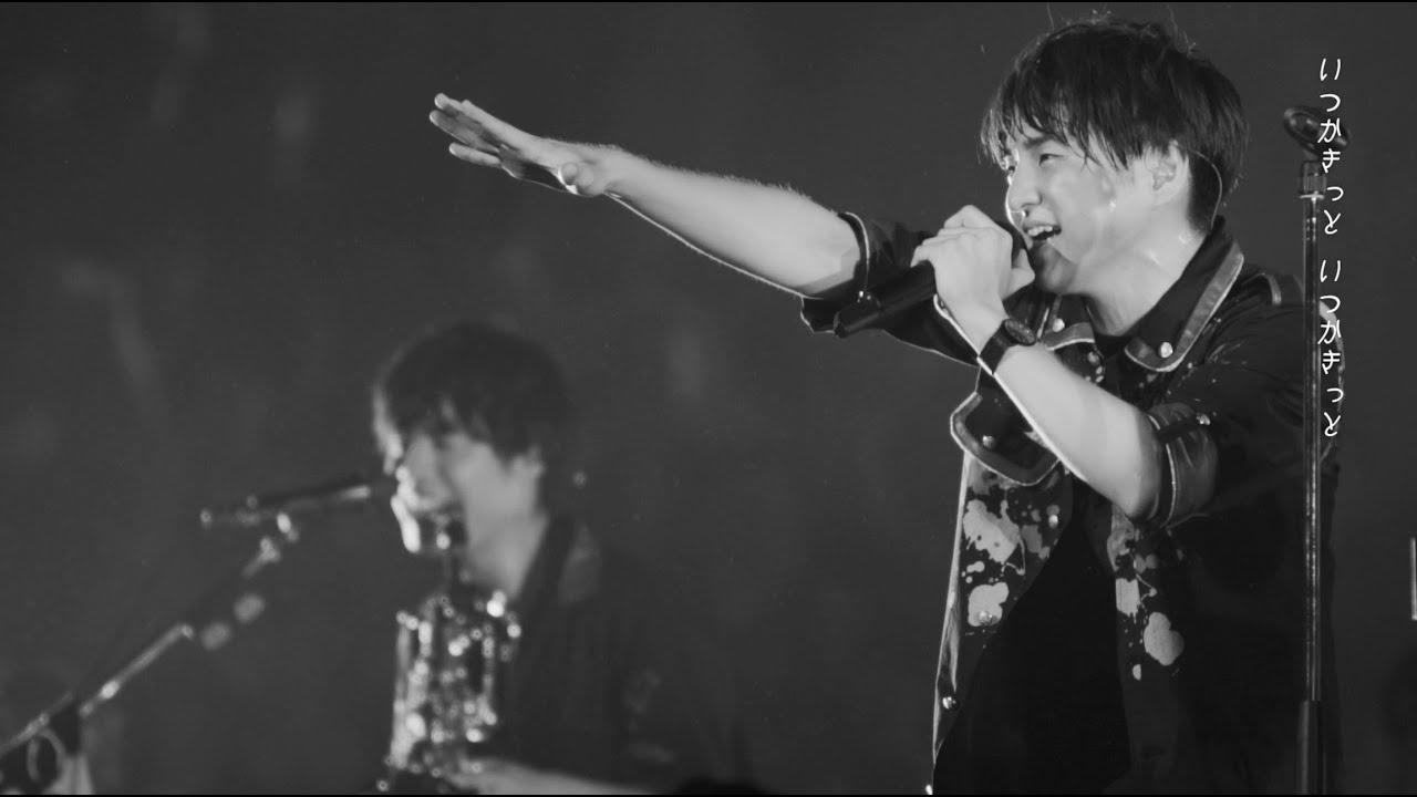 ライブ 髭 映像 男 Official髭男dism、過去のライブや密着映像で構成された「パラボラ」MVを公開