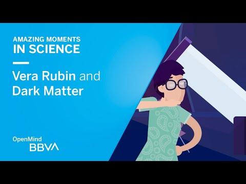 Vera Rubin and Dark Matter
