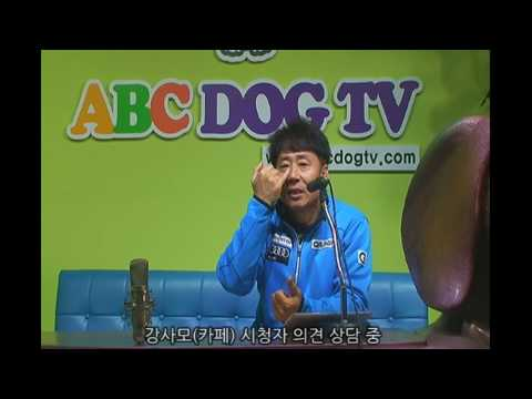 ABC DOG-TV