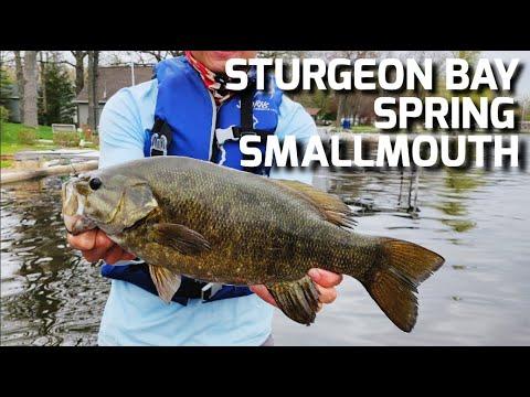 sturgeon-bay-giant-smallmouth--5/23