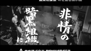 風来坊探偵 岬を渡る黒い風  DVD発売【告知】