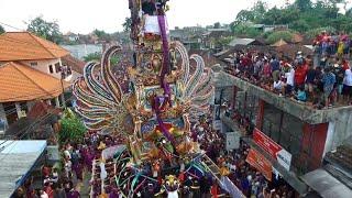 Upacara Pelebon Puri Ubud 8 Mei 2016
