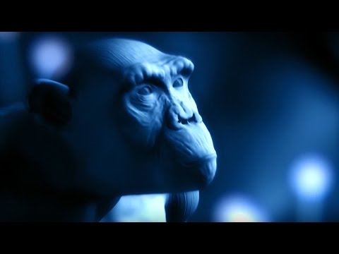 Explaining The Tree of Life | #Attenborough90 | BBC