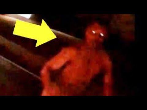 Top 7 Criaturas Aterradoras Captadas en Cámara Que La Ciencia No Puede Explicar