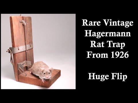 Huge Flip!! Rare Vintage Hagermann Rat Trap From 1926. Mousetrap Monday.