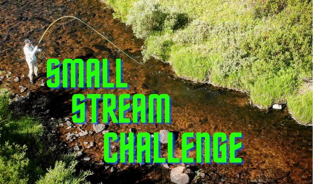 SMALL STREAM CHALLENGE (fly fishing)