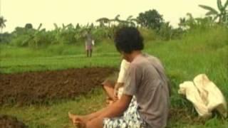 Dilema Anak Petani (anak iseng production)
