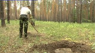 Вырубка деревьев(, 2012-05-18T13:01:18.000Z)
