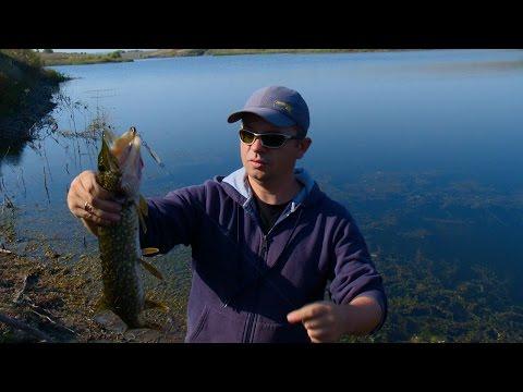 рыбалка в конце октября на спиннинг река