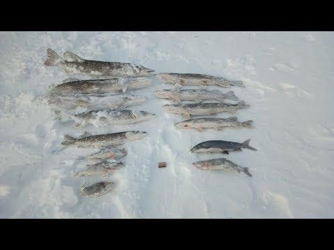 Весенняя рыбалка на щук! Якутия Yakutia