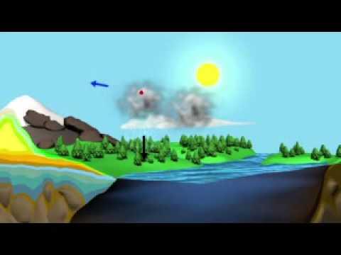 Aquarius: Water Cycle