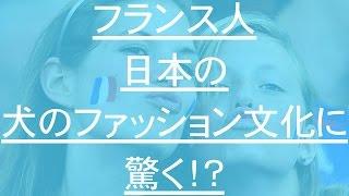 日本人の『建前』が 外国人には合わないのでしょうか? こんな風に言わ...